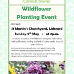 Poster showing details of wildflower planting event in Churchyard